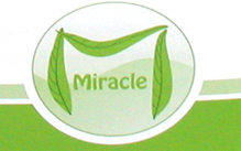 Miracle Studie